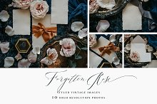 Forgotten Rose Wedding Stock by  in Print