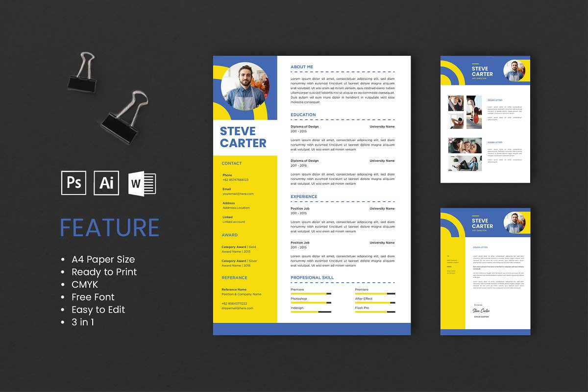 Professional CV And Resume Template