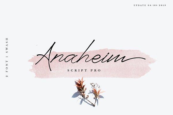 Anaheim script pro font ( update )