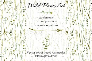 Wild plants set