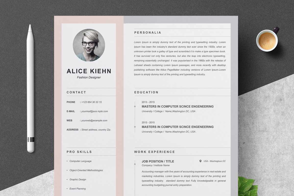 Professional Resume / CV Template ~ Resume Templates ...