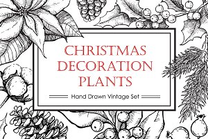 Hand Drawn Christmas Plants.