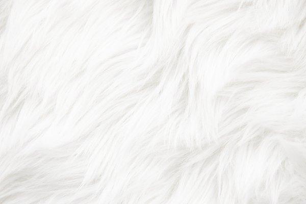 White Fur Texture High Quality