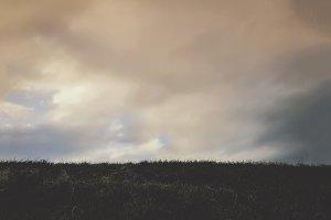 Grass and Beautiful Sky