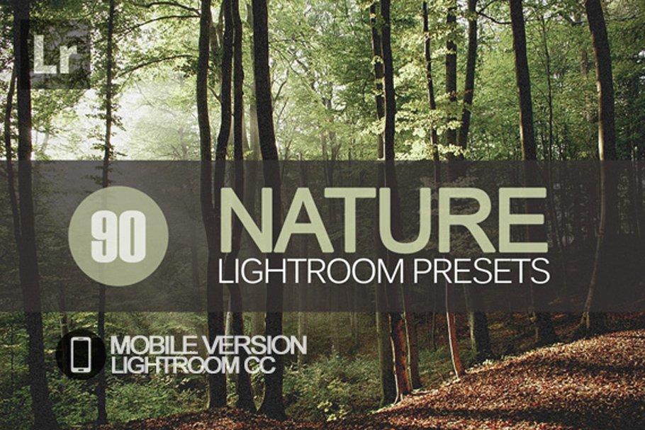 Naturalist Lightroom CC Preset Pack ~ Lightroom Presets ~ Creative