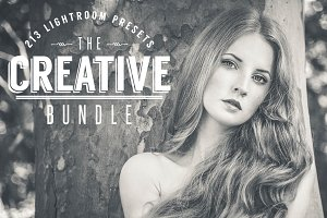 Creative Bundle Lightroom Presets