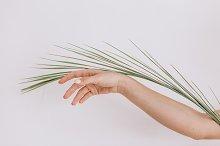 Woman hand with palms leaf by  in Beauty & Fashion