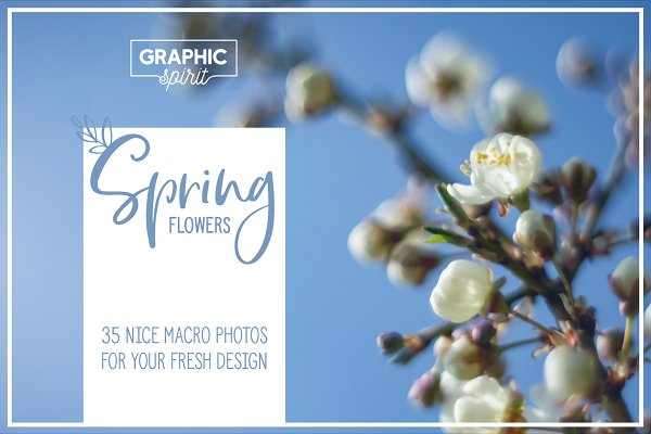 Spring Flowers Banner Backgrounds