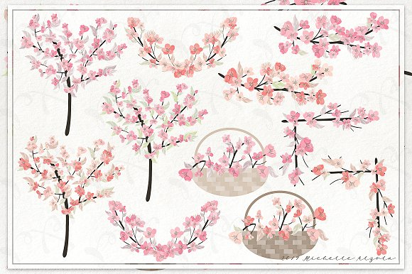 Cherry Blossoms 04 - Graphics Pack in Illustrations - product preview 2