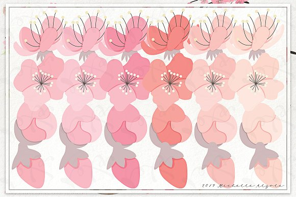 Cherry Blossoms 04 - Graphics Pack in Illustrations - product preview 4
