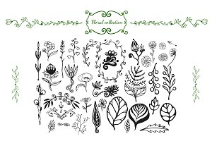 Wildflowers hand drawn collection