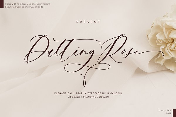 Script Fonts - Datting Rose