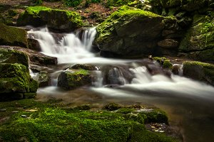 Water cascade in a green forest