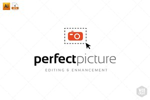 Perfect Picture Logo Template 1