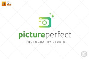 Picture Perfect Logo Template 3