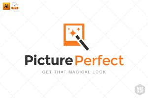 Picture Perfect Logo Template 5