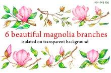 Watercolor magnolia branches.
