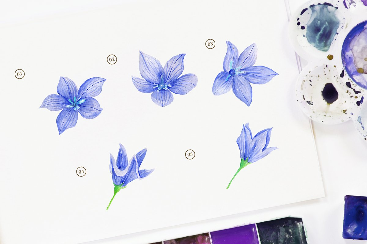 15 Watercolor Ballon Flower in Objects - product preview 1