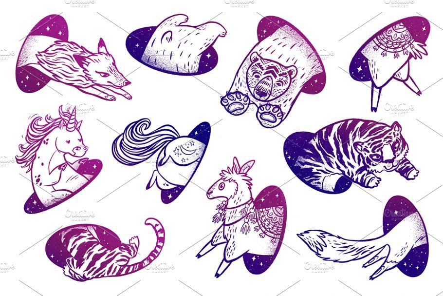 Animals in magic teleport