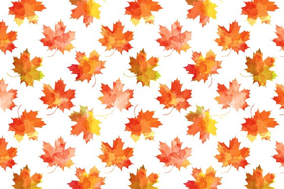set of autumn leaves patterns illustrations creative market