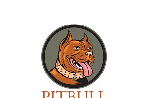 Pitbull Home Security Solutions Logo