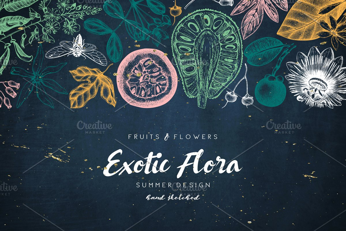 Exotic Plants Vector Collection ~ Graphic Objects ~ Creative