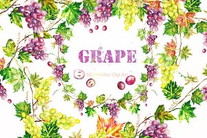 Grape watercolor Clip art