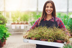 woman working in commercial nursery
