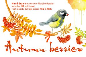 """Floral collection """"Autumn berries"""""""