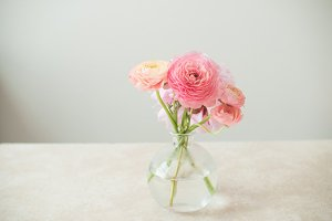 Ranunculus Flowers in Vase