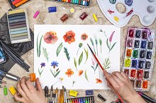 Watercolor flowers set by  in Abstract