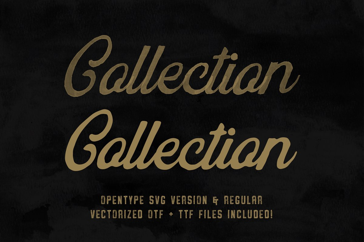 Vintage SVG Bundle & Logo Templates in Display Fonts - product preview 12