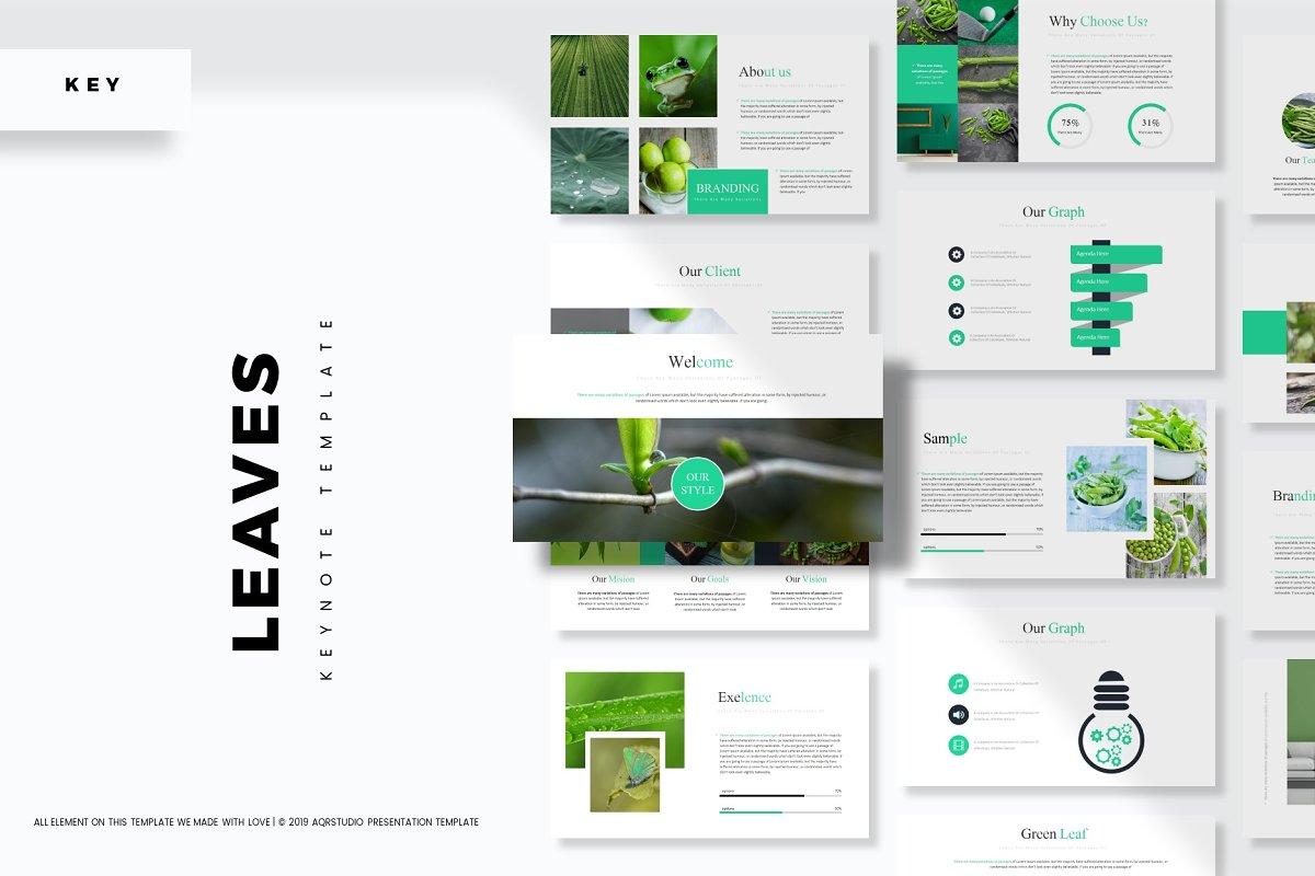 Leaves - Keynote Template