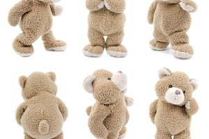 teddy bear set (1 of 3)