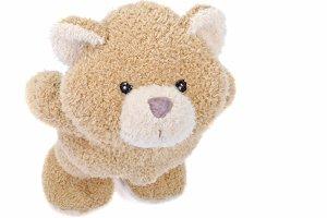 cute teddybear. Concept of love