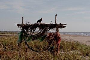 Beach Hutch