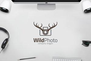 Wild Deer Camera - Animal Photo