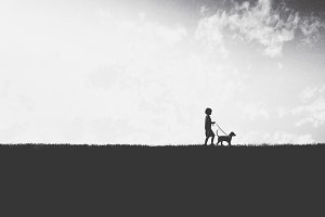 A Boy Walking His Dog