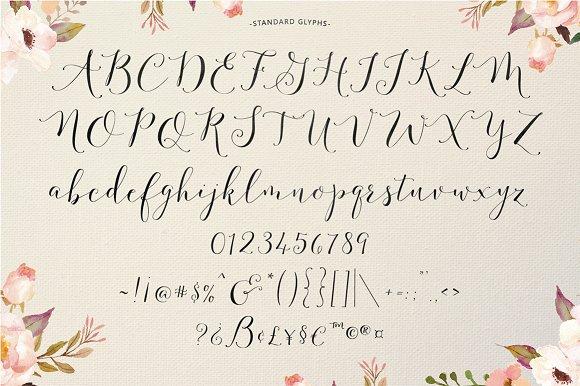 Fashionista Modern Calligraphy Script Fonts Creative Market