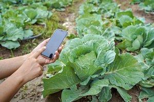 Smart farming, using mobile in farm