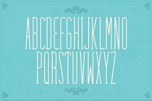 Fabuleuse Slab Font + Free Bonus