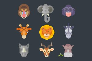 African animal icon color set