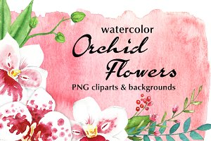Watercolor Orchid Flowers