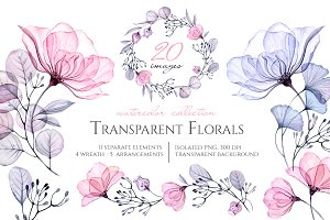 Watercolor Transparent Florals set