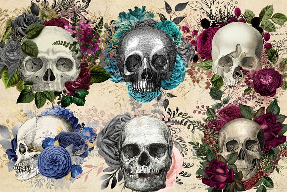 Floral Skull Graphic Elements in Illustrations - product preview 1
