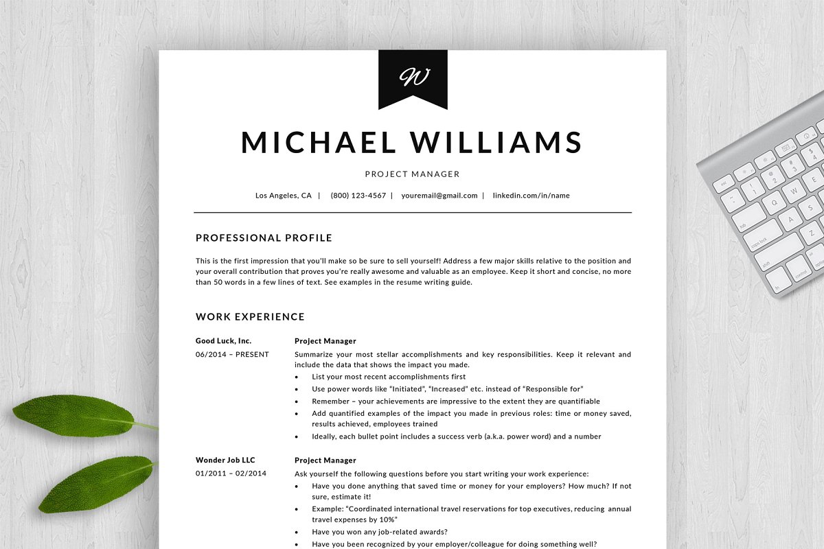 Professional Resume Template | CV + ~ Resume Templates ...