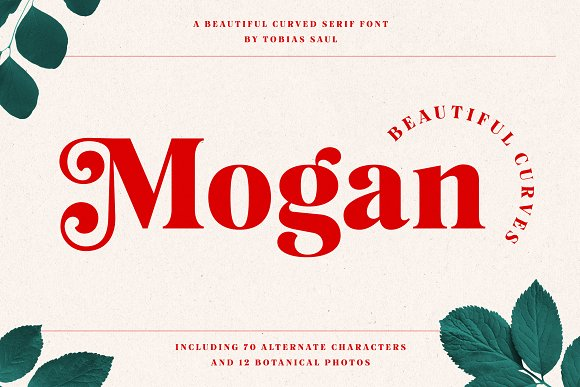 Mogan Font + Extras in Display Fonts - product preview 7