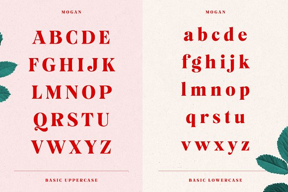 Mogan Font + Extras in Display Fonts - product preview 9