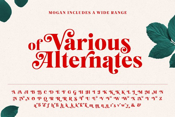 Mogan Font + Extras in Display Fonts - product preview 10