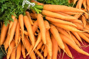 Fresh bunches of carrots at market